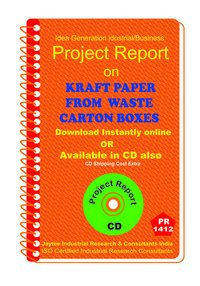 Kraft Paper from Waste Carton Boxes manufacturing eBook