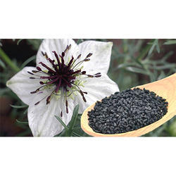 Nigella Sativa Extract