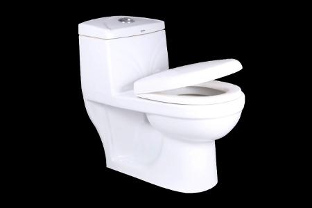 EWC Round Pedestal One Piece Toilet