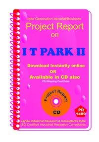I T Park establishment Project Report eBook