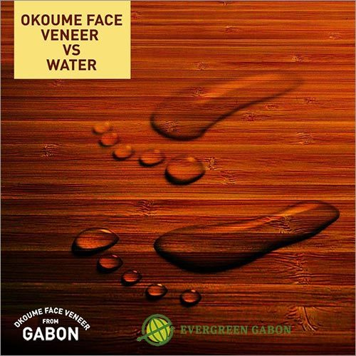 Okoume Face Veneer Vs Water