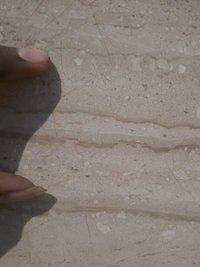 Italian light  cream dyna marble