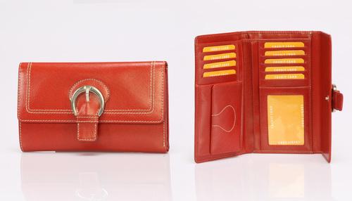 Brown Women Wallet