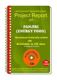 Panjiri (Energy Food) manufacturing Project Report eBook