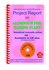 Aluminium Foil Making Plant establishment Project Report eBook