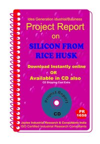 Silicon From Rice Husk Part B manufacturing Project Report eBook