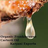 Organic Frankincense Carterii Oil