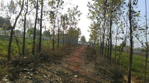 Katyani Township Chandpur