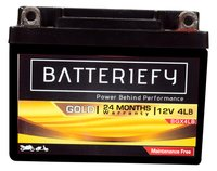 12V 4AH Gold AGM Bike Battery
