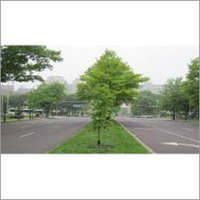 Landscape Garden Services