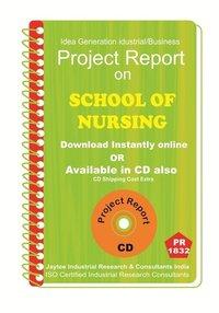 School of Nursing establishment Project Report ebook