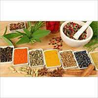 Fresh Herbs And Spices Other
