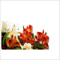 Floral Restaurant Table Mat