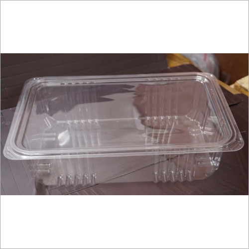Disposable Plastic Container