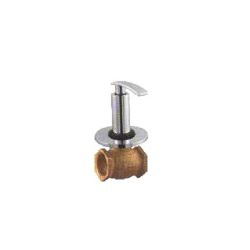 Flush Valves 25 MM