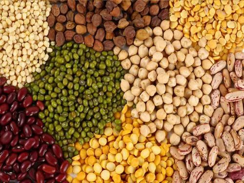 EXPORTER OF ALL TYPE OF AGRO PRODUCTS