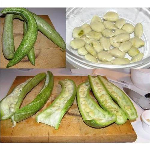 Snake Gourd Seeds