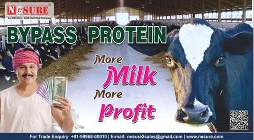 Dairy bypass protein