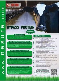Bypass Protein with fat for animals