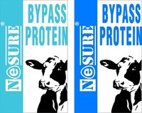 Bypass Protein supplement
