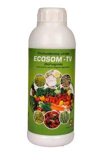 Ecosom-TV