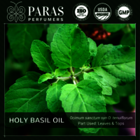 Holy Basil (Tulsi) Oil