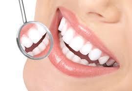 Dental Products Manufacturer