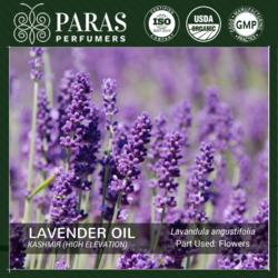Lavender Oil Kashmir (High Elevation)