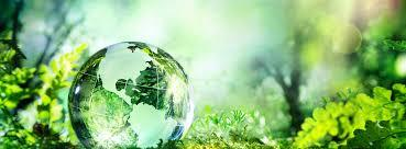 Gpcb Authorized Environment Consultant