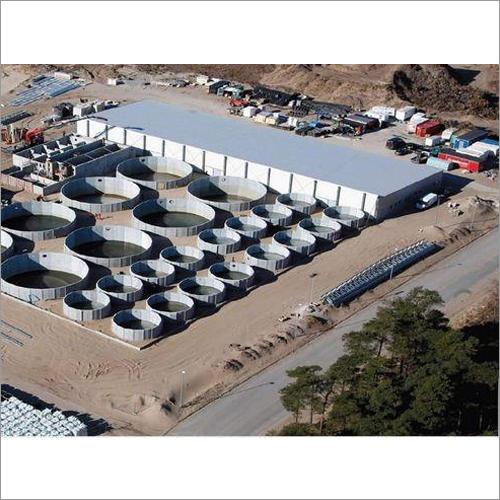 Recirculatory Aquaculture System
