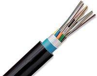 12 Fiber Optic Cable