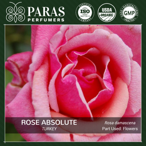 Rose Absolute, Turkey