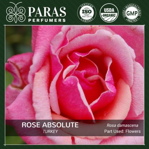 Rose Absolute, Turkey