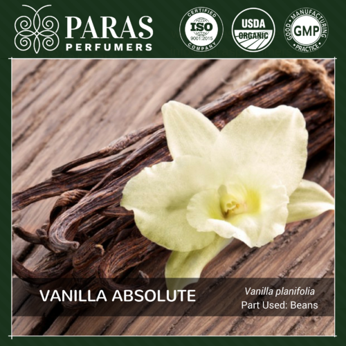 Vanilla Absolute Oils