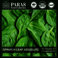 Spinach Leaf Absolute Oils