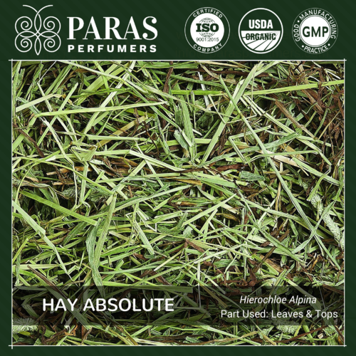 Hay (Sweetgrass) Absolute Oils