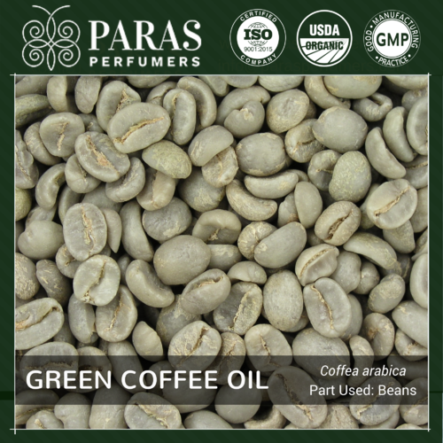 Green Coffee Bean Oil