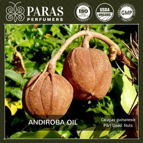 Andiroba Oil