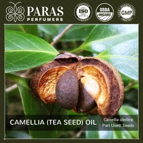 Camellia (Tea Seed) Oil