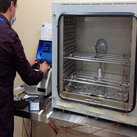 Sterilizer Validation Services
