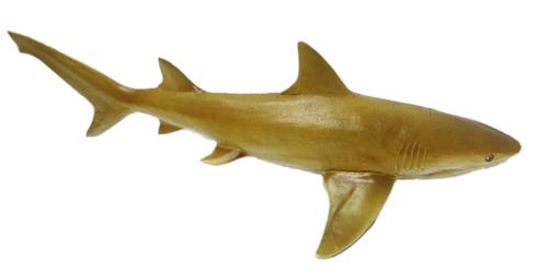 newly plastic cartoon animal toys for lemon shark