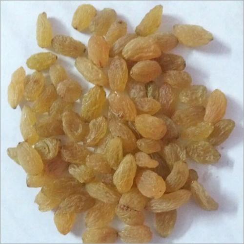 Special Golden Yellow Raisins