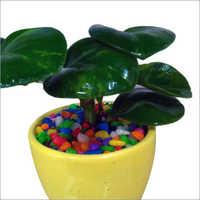 Small Cup Ceramic Pot