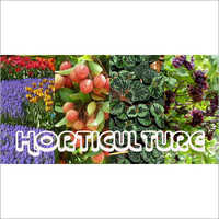 Horticulture Subsidy Consultant Service