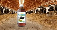 Formulated Omega3 Animal Feed Supplements