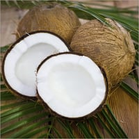 Mature Coconut