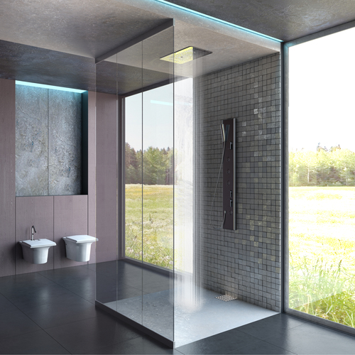 Small Multifunction Rain Shower