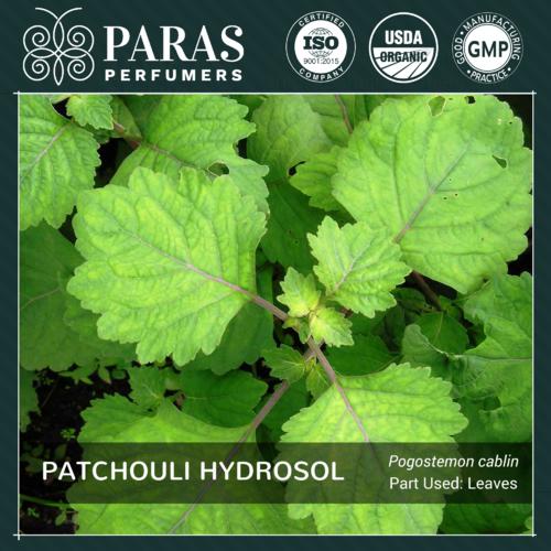 Patchouli Hydrosol