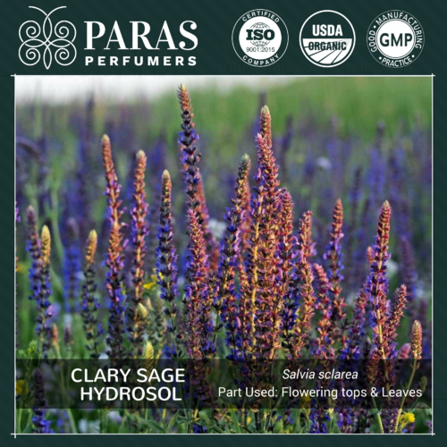 Clary Sage Hydrosol Floral Waters