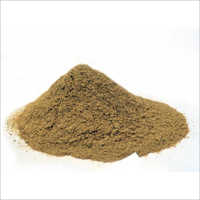 Khair (Acacia catechu) Chal Powder